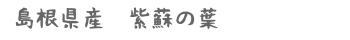 shiso_shoukai